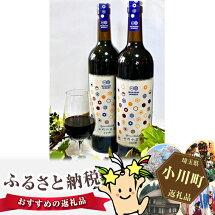 【ふるさと納税】No.012武蔵ワイナリー完全無農薬ワイン小川小公子2016750ml