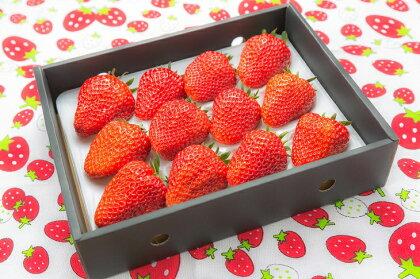 埼玉県長瀞町産 大粒いちご ※農作物の為大きいサイズができ次第の発送となります。