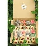 【ふるさと納税】いちごの蝶々クッキーとドライいちごのフレーバーティーセット【1080722】