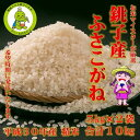 【ふるさと納税】平成30年度産潮風香る銚子産ふさこがね 精米