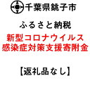 【ふるさと納税】【新型コロナウイルス感染症対策寄附受付】千葉県銚子市応援寄附金(返礼品はありません)