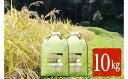 【ふるさと納税】君津市石川商店【新品種】千葉・粒すけ 10kg 【大つぶ】