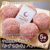 【ふるさと納税】☆千葉県産ブランド牛「かずさ和牛」ハンバーグ5個セット