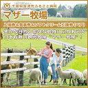 【ふるさと納税】◇マザー牧場 入場券&食事券&ソフトクリーム...