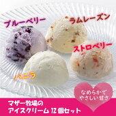 【ふるさと納税】☆マザー牧場アイスクリーム12個セット