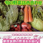 【ふるさと納税】☆【月1回・計6回】野菜詰め合わせ&天羽米コシヒカリ5kg