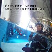 【ふるさと納税】ダイビング体験千葉県白井市スキューバ専用屋内プール初心者向けPADI5スターIDセンター