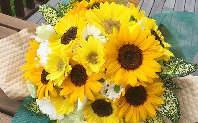 南房総産 生花(ひまわり) 花束 約30本