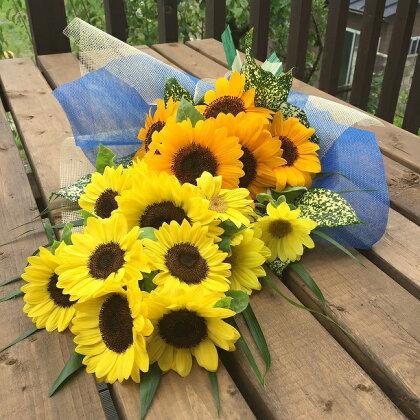 南房総産 生花(ひまわり) 花束 約17本