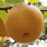 【ふるさと納税】 梨 幸水 千葉 8月 5kg 14個 3L 送料無料