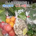 【ふるさと納税】 野菜 定期便 3回 詰め合わせ 直売所 ごじゃ箱 送料無料 コシヒカリ 旬