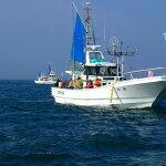 【ふるさと納税】C001釣り船乗船(1名様)