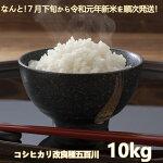 【ふるさと納税】A637コシヒカリ改良種五百川10kg
