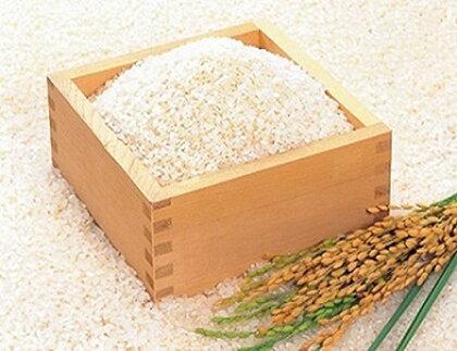 ちば緑耕舎 栄町産特別栽培米コシヒカリ15kg(5kg×3)