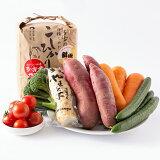 【ふるさと納税】多古米3kgと季節の野菜