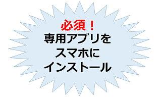 【ふるさと納税】ひらつか☆スターライトマーレ(行政ポイント3000pt付与)【ポイント】お届け:2021年7月1日〜2022年1月15日