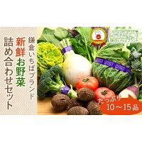 【ふるさと納税】「鎌倉いちばブランド」新鮮お野菜詰め合わせセット