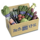 【ふるさと納税】旬の湘南野菜おまかせセット 【野菜・セット・詰合せ】