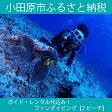 【ふるさと納税】ガイド・レンタル代込み!ファンダイビング【2ビーチ】