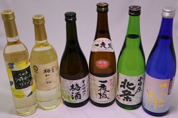 【ふるさと納税】城下町小田原の日本酒3本と厳選3本 味くらべ6本