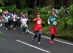 【ふるさと納税】2020年6月28日(日)開催「第4回 天狗のこみちマラソン大会」出走権