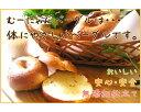 【ふるさと納税】No.008 無添加ベーグルセット 12種2...
