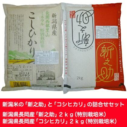 特別栽培米各2kgセット(新潟県長岡産新之助・コシヒカリ)