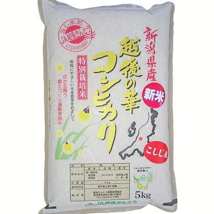 新潟県長岡産コシヒカリ(越路地域)5kg