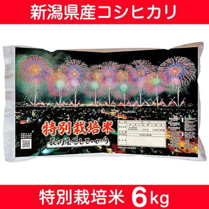 【29年産】 新潟県長岡産コシヒカリ(特別栽培米)6kg