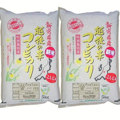 新潟県長岡産コシヒカリ(越路地域)10kg