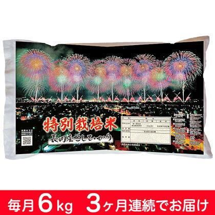 【29年産】新潟県長岡産コシヒカリ(特別栽培米) 毎月6kg 3回お届け