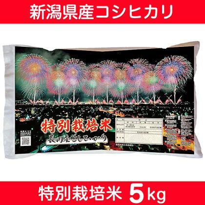 【29年産】新潟県長岡産コシヒカリ(特別栽培米)5kg