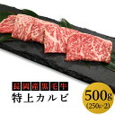 【ふるさと納税】 牛肉 焼肉 76-44長岡産黒毛牛 特上カ