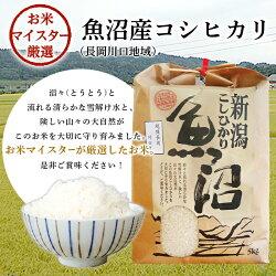 【ふるさと納税】米 5kg 白米 コシヒカリ 魚沼 令和2年 B7-15新潟県魚沼産(長岡川口地域)コシヒカリ5kg 画像1