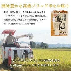 【ふるさと納税】米 5kg 白米 コシヒカリ 魚沼 令和2年 B7-15新潟県魚沼産(長岡川口地域)コシヒカリ5kg 画像2