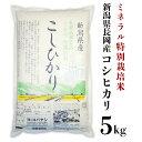 【ふるさと納税】B7-21新潟県長岡産コシヒカリ5kg(ミネ...