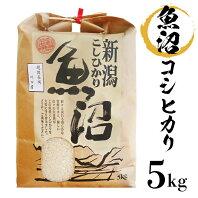 【ふるさと納税】米 5kg 白米 コシヒカリ 魚沼 令和2年 B7-15新潟県魚沼産(長岡川口地域)コシヒカリ5kg