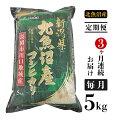 【ふるさと納税】ご当地のおいしいお米が返礼品でもらえる!おすすめの自治体は?
