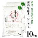 【ふるさと納税】E1-05新潟県産米コシヒカリ10kg
