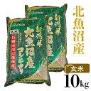 【ふるさと納税】G10-1【玄米】北魚沼産コシヒカリ10kg