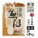 【ふるさと納税】米 5kg 白米 コシヒカリ 新潟 令和2年 B7-16【3ヶ月