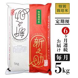 【ふるさと納税】<定期便>B7-07【6ヶ月連続お届け】長岡産新之助5kg(特別栽培米)