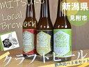 【ふるさと納税】新潟 見附市 クラフト ビール 3本 飲み比べセット 送料無料