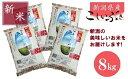 【ふるさと納税】新潟 県 産 新米 こしいぶき 8kg 精米...