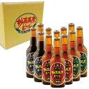 【ふるさと納税】妙高高原ビール 3種ギフトセット 330ml 12本