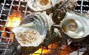 【ふるさと納税】活さざえ(15個入り)【魚貝類/サザエ・シーフード】