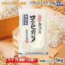 【ふるさと納税】無洗米お米マイスター厳選魚沼コシヒカリ 5k
