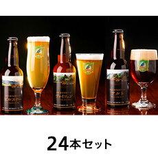 【ふるさと納税】ビール24本0116【国内最高賞受賞】胎内高原ビール24本セット