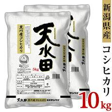 【ふるさと納税】米10kg令和2年白米27-101新潟県黒川産コシヒカリ10kg(5kg×2袋)【天水田】