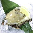 【ふるさと納税】新潟県産 天然岩牡蠣(生食用) 15個 約2